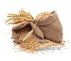 Зерновой набор AMERICAN PALE ALE (APA) от Фомы Менделеева